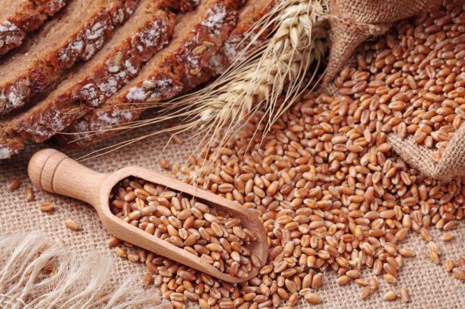 Колонка доктора Элькина: Миф о пользе зернового хлеба и отрубей