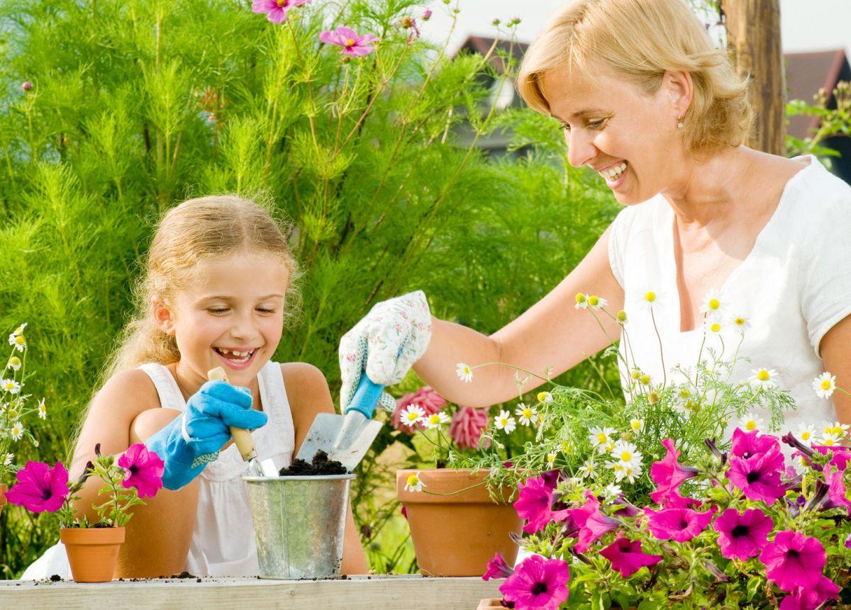 Выращивание и уход за цветами фото