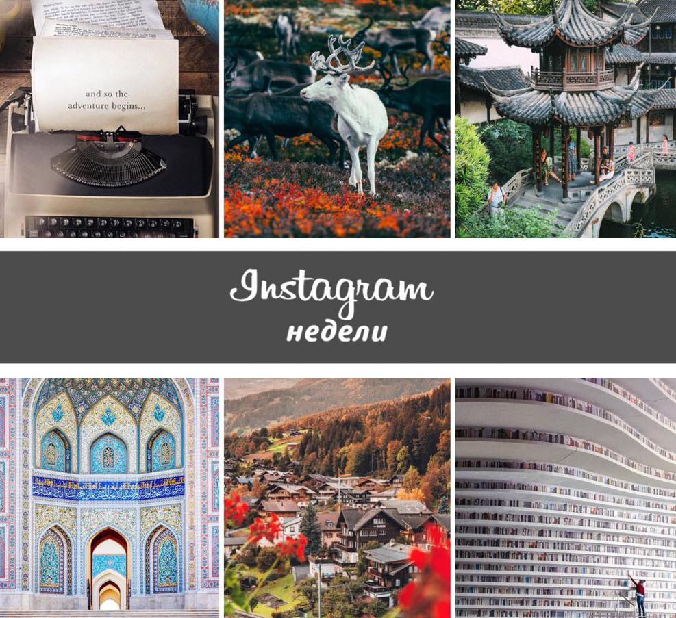 Instagram недели: @passionpassport